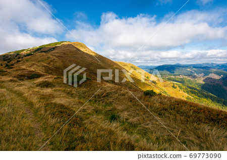 mountain landscape in autumn. dry colorful grass on the hills. ridge behind the distant valley. view from the top of a hill. clouds on the sky. synevir national park, ukraine 69773090
