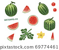Watermelon illustration 69774461