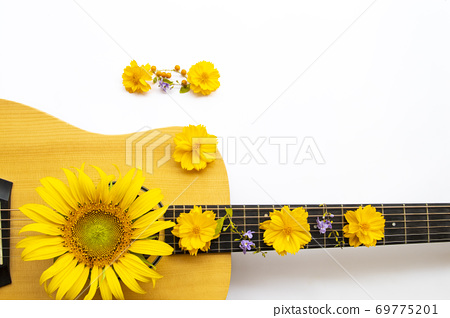 yellow flowers cosmos, sunflowers arrangement on acoustic guitar flat lay postcard style 69775201