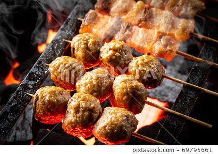 烧烤烤鸡肉串 69795661