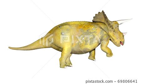 Triceratops 69806641
