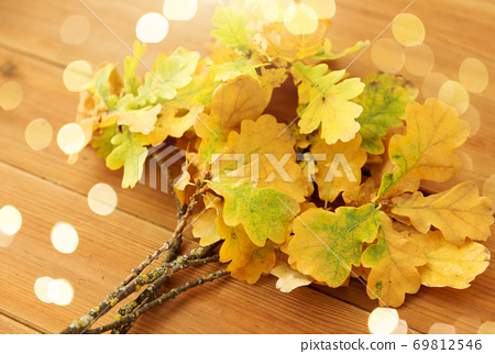 oak leaves in autumn colors on wooden table 69812546