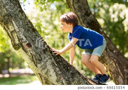 happy little boy climbing tree at park 69815854