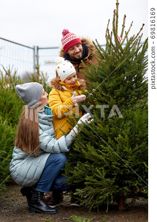 happy family choosing christmas tree at market 69816169