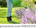 young woman watering flowers at garden 69816356