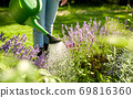 young woman watering flowers at garden 69816360