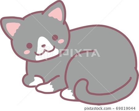 Gray tuxedo cat 69819044