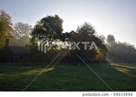 穿透公園的樹木,照武亮綠的草原。 69833698