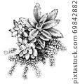 꽃 같은 다육 식물 69842882