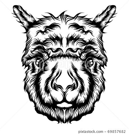 The illustration of the single head alpaca tattoo animation 69857682