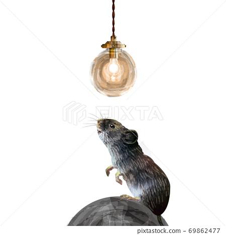 無吊燈和老鼠背景 69862477