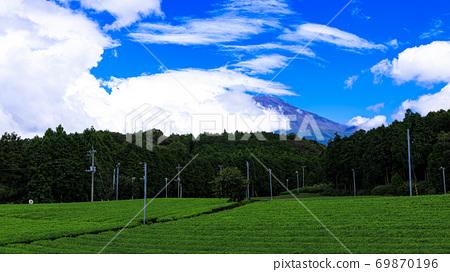 차밭과 후지산으로 유명한 大渕 笹場의 여름 69870196
