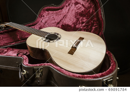 Acoutic guitar sits in red velvet lined case 69891784