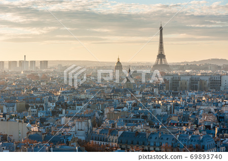 Paris skyline aerial view with the eiffel tower 69893740