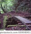 Ashi no Mori Dolly Trail 69908901
