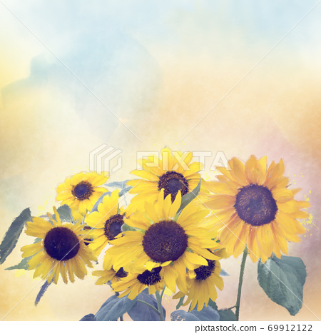 Watercolor digital painting of sunflowers 69912122