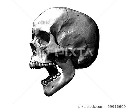 Vintage screaming skull illustration on white BG 69916609