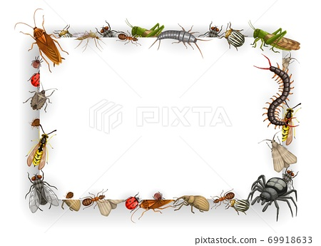 Frame with insects cartoon vector parasites border 69918633
