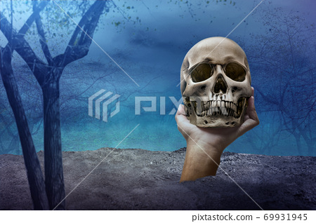 Hand raised from the ground and holding a human skull on the haunted forest 69931945