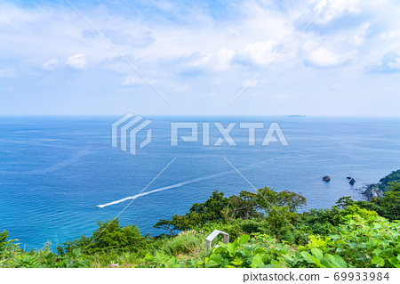[靜岡縣]被熱海自然包圍的赤尾香草和玫瑰園 69933984