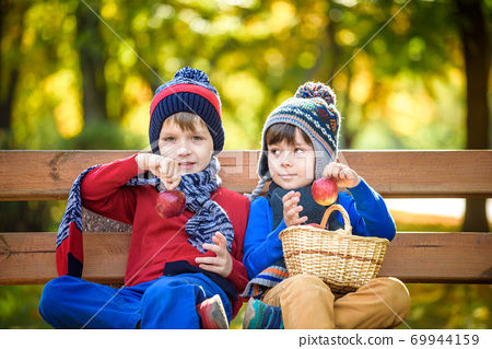 Child picking apples on a farm in autumn. Little boy sitting on bench in apple tree orchard. Kids pick fruit in a basket. Toddler eating fruits at harvest. Outdoor fun for children. Healthy nutrition. 69944159