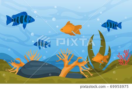Beautiful Aquarium Fish Colorful Reef Water Plant Illustration 69958975