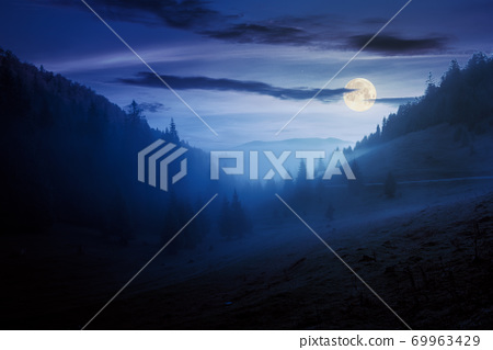 morning mist in apuseni natural park at night. valley full of fog in full moon light. beautiful landscape of romania mountains in autumn. spruce trees on the hills. 69963429