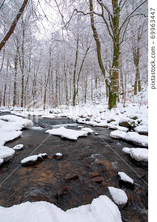 water stream in the winter forest. trees and shore covered in snow 69963447