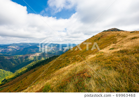 mountain landscape in autumn. dry colorful grass on the hills. ridge behind the distant valley. view from the top of a hill. clouds on the sky. synevir national park, ukraine 69963468