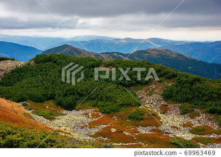 autumn scenery in high mountains. trees on the rocky slopes and hills. colorful nature scenery with cloudy sky above the distant ridge 69963469