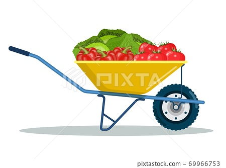 Garden cart with zucchini, eggplant, carrot. 69966753