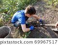 Boy harvests potatoes 69967517