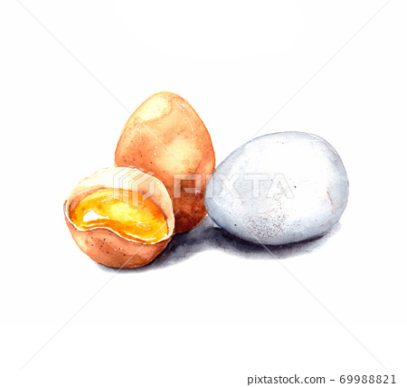 hand-drawn watercolor illustration. image of chicken eggs on a white background. white and brown chicken egg. whole and broken egg with yolk. isolated 69988821