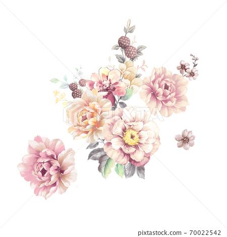 水彩玫瑰花卉集合 70022542