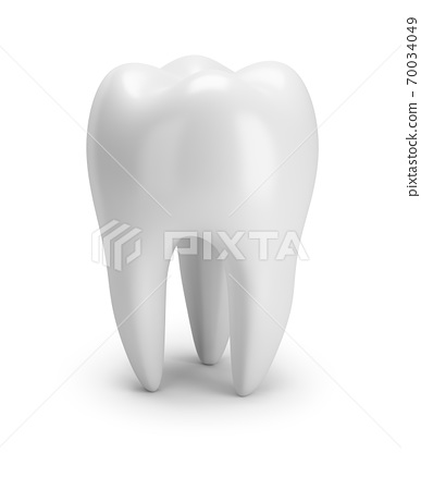 tooth 70034049