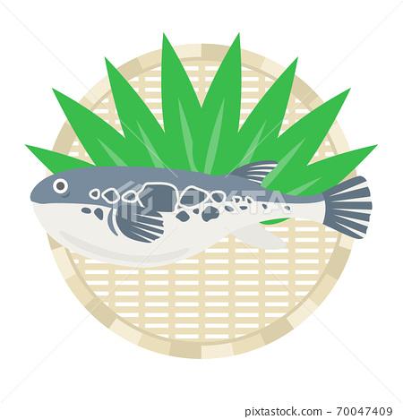 Illustration of blowfish on a colander 70047409