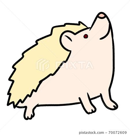 查找白化色Harinezumi(手勢,寵物,友好,介紹,生活方式) 70072609