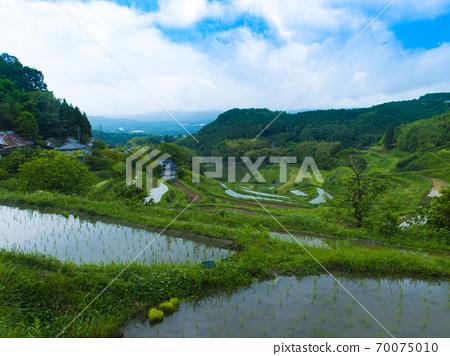Rice terraces in Kitajo, Okayama Prefecture (100 selections of rice terraces in Japan) 70075010