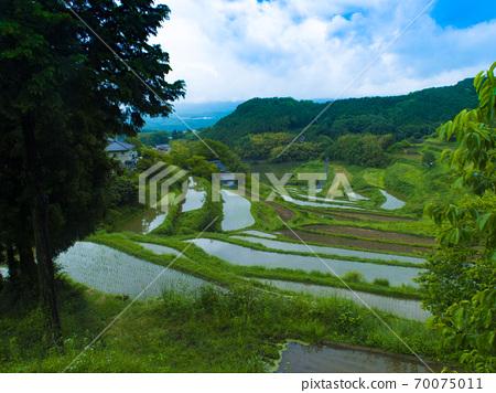 Rice terraces in Kitajo, Okayama Prefecture (100 selections of rice terraces in Japan) 70075011