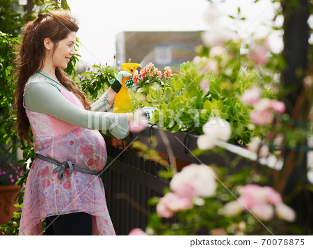 Young Pregnant Woman Spraying Water On Plants And Flowers 70078875