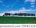 紅色拖拉機行駛的七星山(北海道美榮町) 70081326