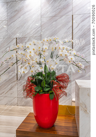 Beautiful white orchid flower pot for decoration in luxury hotel 70090026