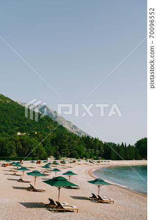 Luxurious wooden sun loungers and green beach umbrellas, on a sandy beach in Milocer Park, near Sveti Stefan Island, Montenegro. 70096552