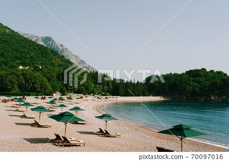 Luxurious wooden sun loungers and green beach umbrellas, on a sandy beach in Milocer Park, near Sveti Stefan Island, Montenegro. 70097016