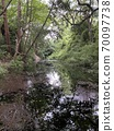 小田原城堡遺址公園的池塘 70097738