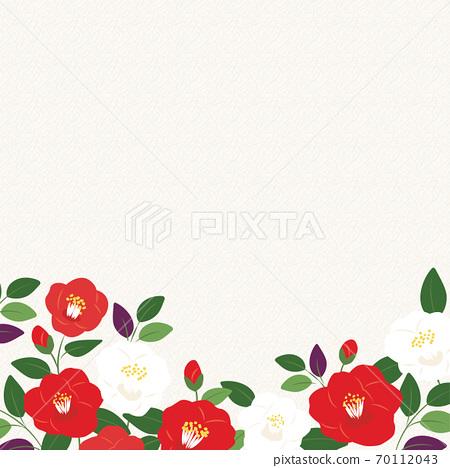 홍백의 동백 꽃 배경 일러스트 70112043
