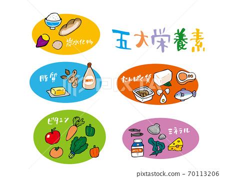 5種主要營養素的插圖 70113206