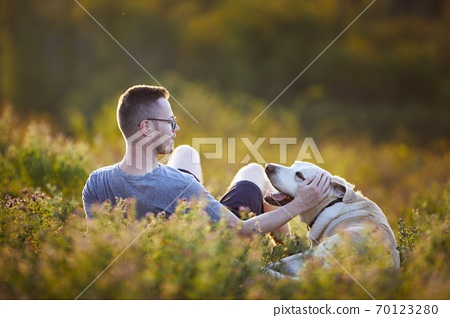 Man with dog lying on meadow at sunset 70123280
