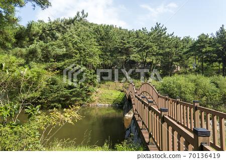 海香木植物園 70136419