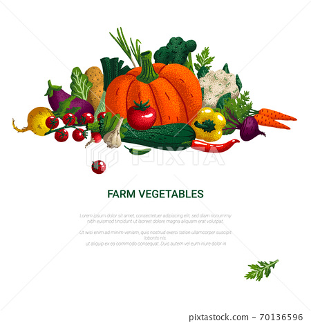 Banner with vegetables. Concept healthy food, farm vegetables. Variety of decorative vegetables with grain texture isolated on white. Vector illustration. 70136596